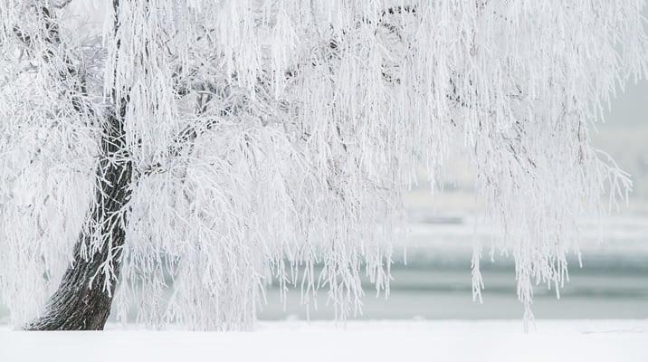 ハイローオーストラリアの凍結