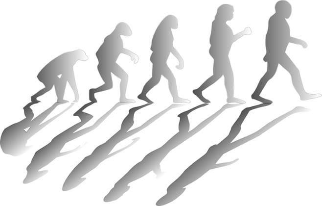 ハイローオーストラリア 進化
