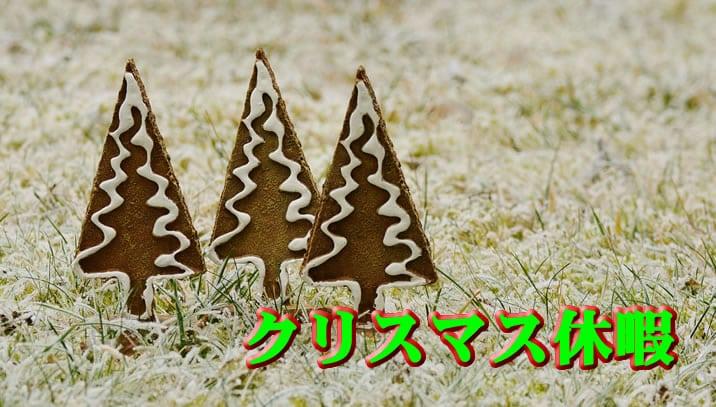 ハイローオーストラリアクリスマス休暇の重要性