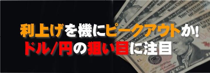 利上げを機にドル/円ピークアウト