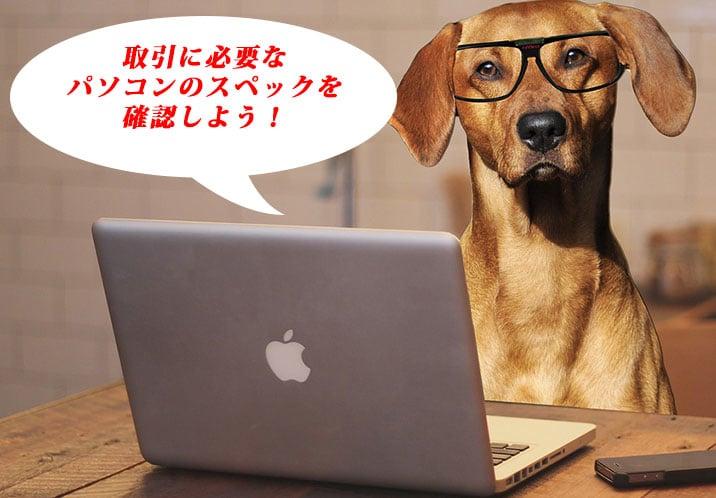 ハイローオーストラリアで取引したい犬