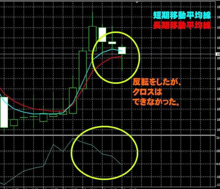 trade200実践取引