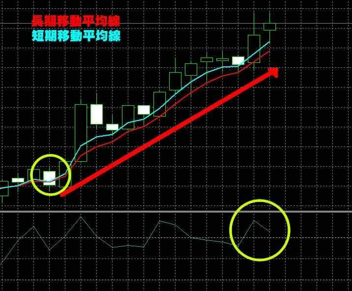 Ybinaryの実戦取引1