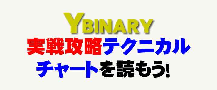 Yバイナリー ロゴ